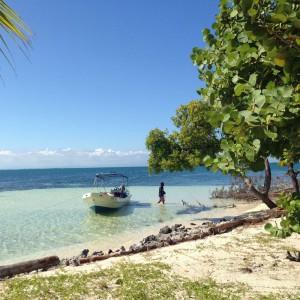 Strand im Belize Barrier Reef Reserve, Belize