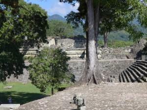 Mayastätte Copán im Regenwald