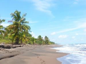 Strand im Tortuguero Nationalpark, Costa Rica