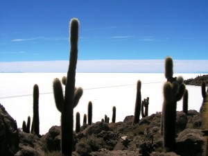 Salar de Uyuni © atacama spirit chile travel